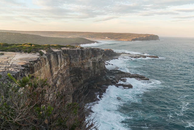 royal national park the northern coastline photographic essay  the wildflowers are blooming the birds are very active feeding and showing off to prospective mates and the landscape is so beautiful